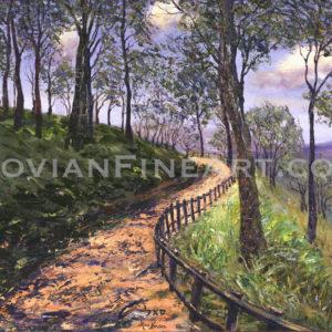 forest-in-bergen-2002_sm